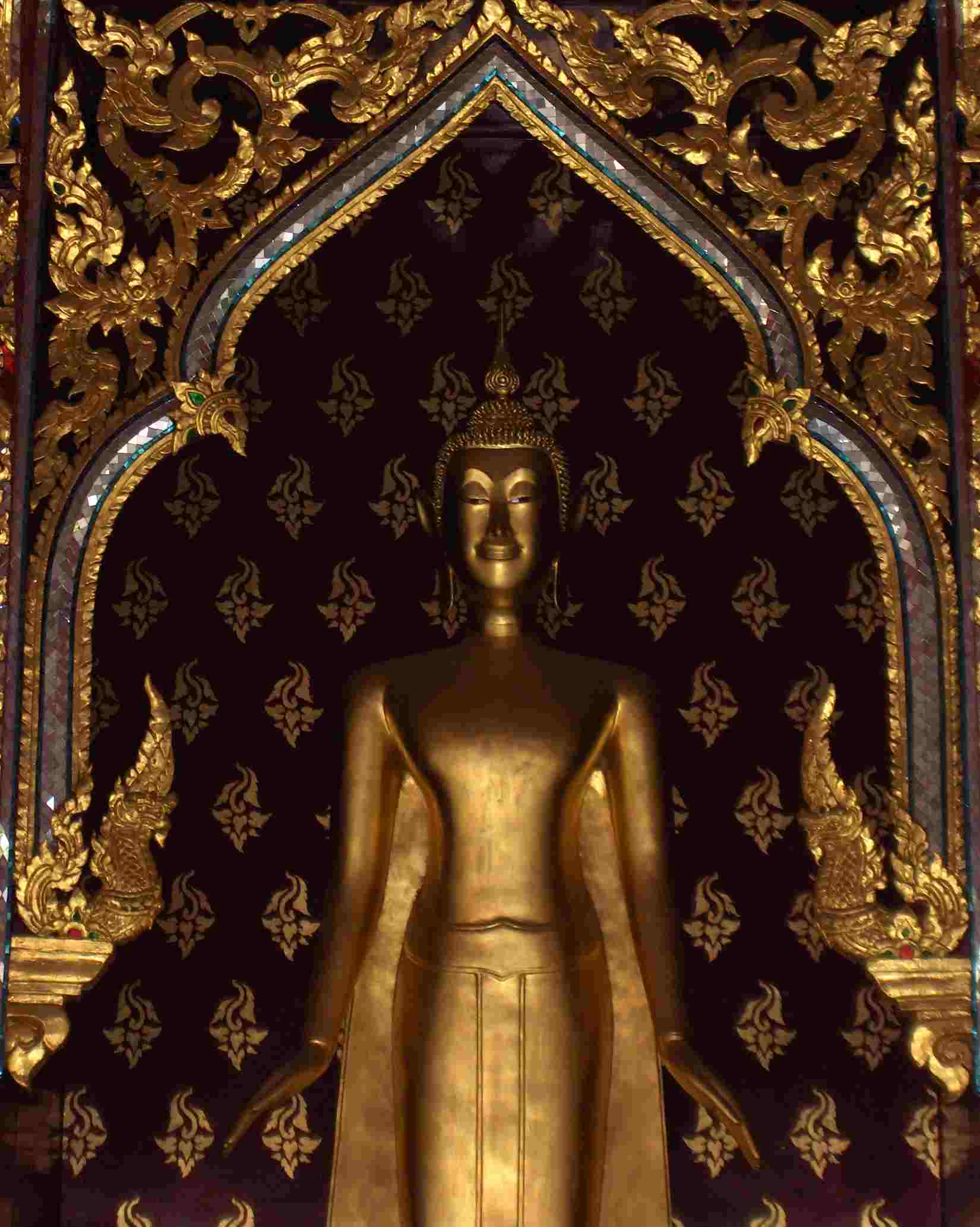 Favoriete Boeddha Wijsheden #QQ56